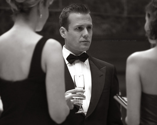 harvey_specter
