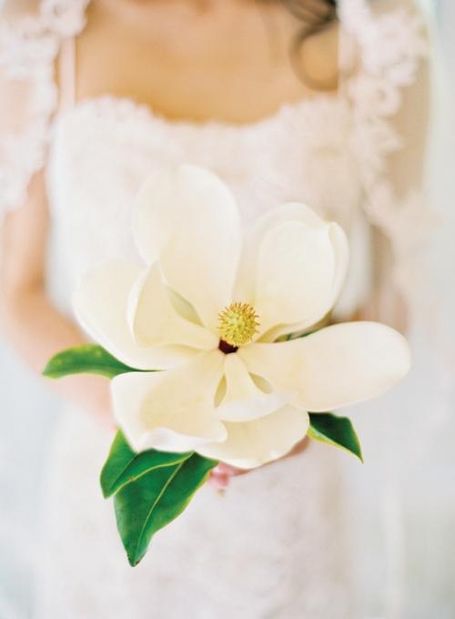 magnolia_bouquet