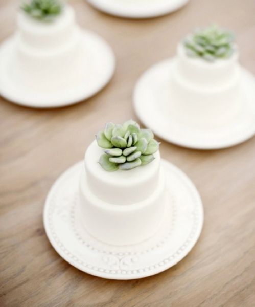 mini_succulent_wedding_cake_1