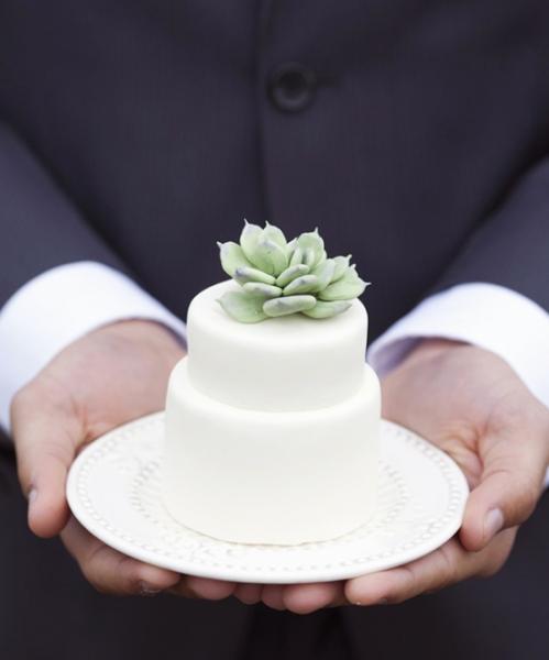 mini_succulent_wedding_cake_2