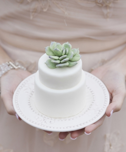 mini_succulent_wedding_cake_3