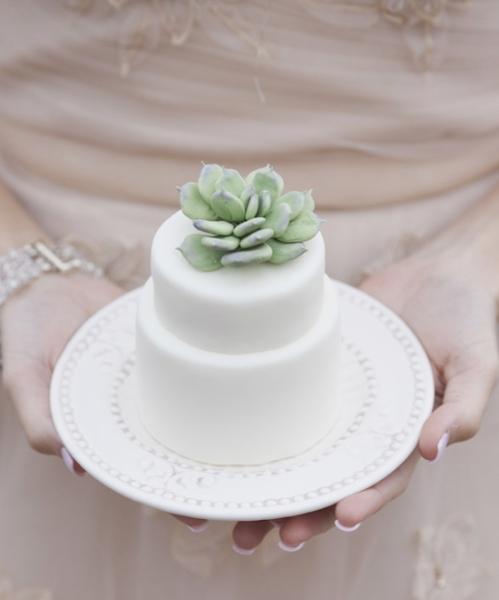 mini_succulent_wedding_cake_3